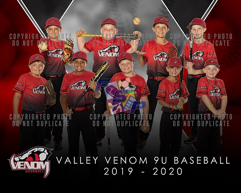 Valley Venom 9U Baseball - 2019