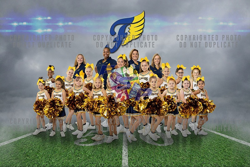 Fluvanna Youth Football Cheer Team/Individual Photos - 2019
